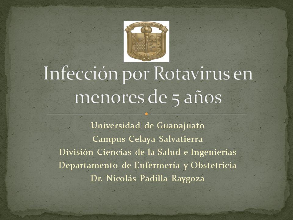 Detección de antígeno de Rotavirus en heces Prueba inmunoenzimática rápida Electroforésis del RNA genómico viral Tinción con nitrato de plata Ensayo inmunoenzimático