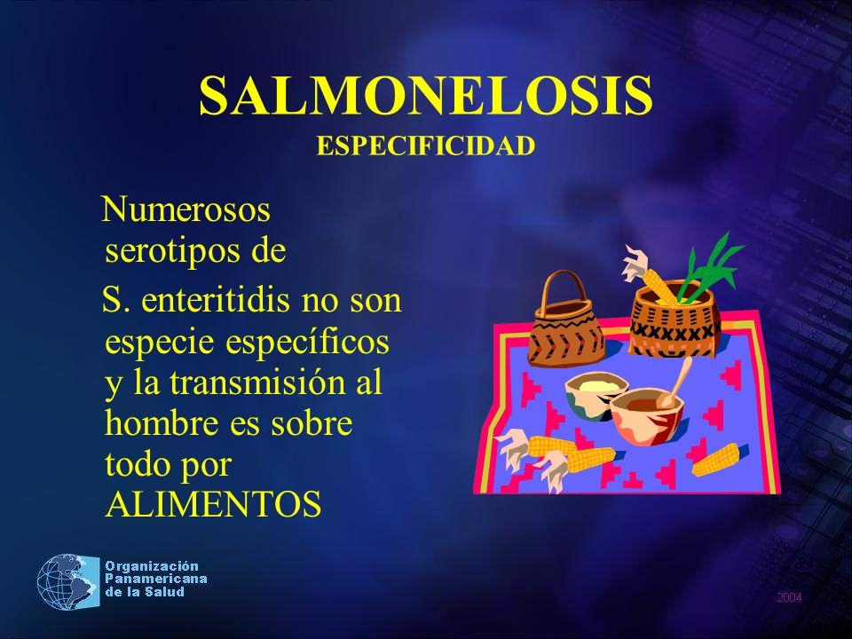 SALMONELOSIS ESPECIFICIDAD Numerosos serotipos de S. enteritidis no son especie específicos y la transmisión al hombre es sobre todo por ALIMENTOS
