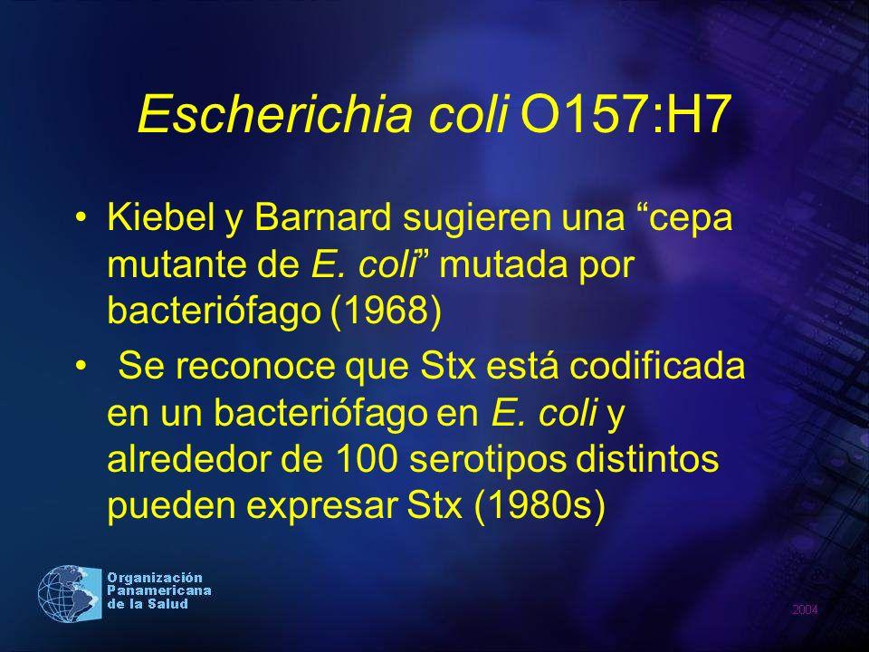 Escherichia coli O157:H7 Kiebel y Barnard sugieren una cepa mutante de E. coli mutada por bacteriófago (1968) Se reconoce que Stx está codificada en u