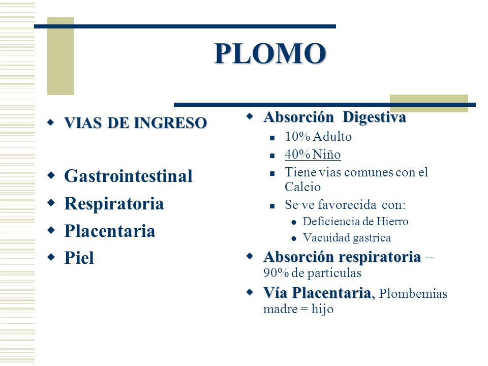 PLOMO VIAS DE INGRESO VIAS DE INGRESO Gastrointestinal Respiratoria Placentaria Piel Absorción Digestiva Absorción Digestiva 10% Adulto 40% Niño Tiene