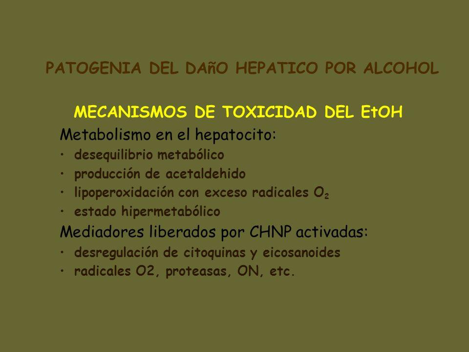 MECANISMOS DE TOXICIDAD DEL EtOH Metabolismo en el hepatocito: desequilibrio metabólico producción de acetaldehido lipoperoxidación con exceso radical