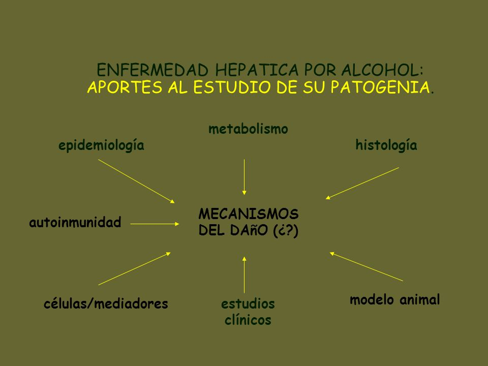 ENFERMEDAD HEPATICA POR ALCOHOL: APORTES AL ESTUDIO DE SU PATOGENIA. epidemiología metabolismo histología MECANISMOS DEL DAñO (¿?) células/mediadores