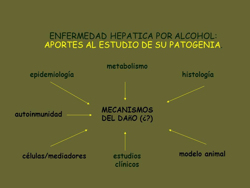 ENDOTOXEMIA SEPSIS INMUNODEPRESION PARED INTESTINAL Isquemia Trauma Enf.inflamatoria SOBRECRECIMIENTO BACTERIANO PATOGENIA DEL DAñO HEPATICO POR ALCOHOL ALCOHOL