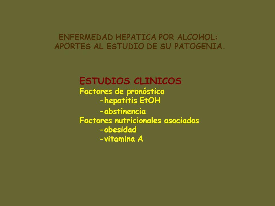 ESTUDIOS CLINICOS Factores de pronóstico -hepatitis EtOH -abstinencia Factores nutricionales asociados -obesidad -vitamina A ENFERMEDAD HEPATICA POR A