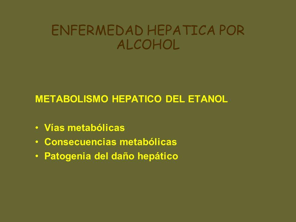 MECANISMOS DE TOXICIDAD DEL EtOH INTERFERENCIA DEL ALCOHOL EN LOS PROCESOS BIOQUIMICOS DE LOS HEPATOCITOS.