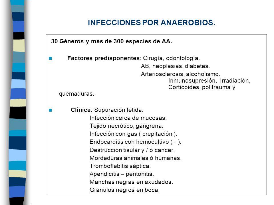 INFECCIONES POR ANAEROBIOS. 30 Géneros y más de 300 especies de AA. Factores predisponentes: Cirugía, odontología. AB, neoplasias, diabetes. Arteriosc