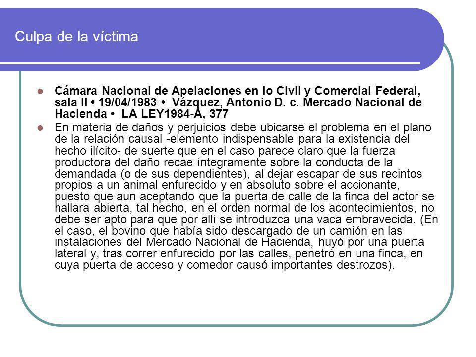 Culpa de la víctima Cámara Nacional de Apelaciones en lo Civil y Comercial Federal, sala II 19/04/1983 Vázquez, Antonio D. c. Mercado Nacional de Haci