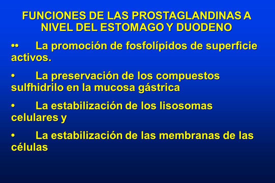 FUNCIONES DE LAS PROSTAGLANDINAS A NIVEL DEL ESTOMAGO Y DUODENO La promoción de fosfolípidos de superficie activos.La promoción de fosfolípidos de superficie activos.