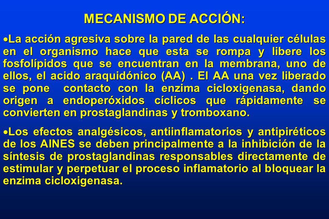 MECANISMO DE ACCIÓN: Existen dos tipos, la cicloxigenasa 1 (Cox 1) vinculada a la producción de prostaglandinas fisiológicas en el riñón y en el estómago cuya función es mantener un volumen de mucus entre otros elementos en el estómago para evitar el daño a sus paredes por el acido clorhídrico que allí se forma; y otra mantener la perfección y el filtrado glomerular a nivel renal principalmente cuando existe hipoperfución a este nivel.
