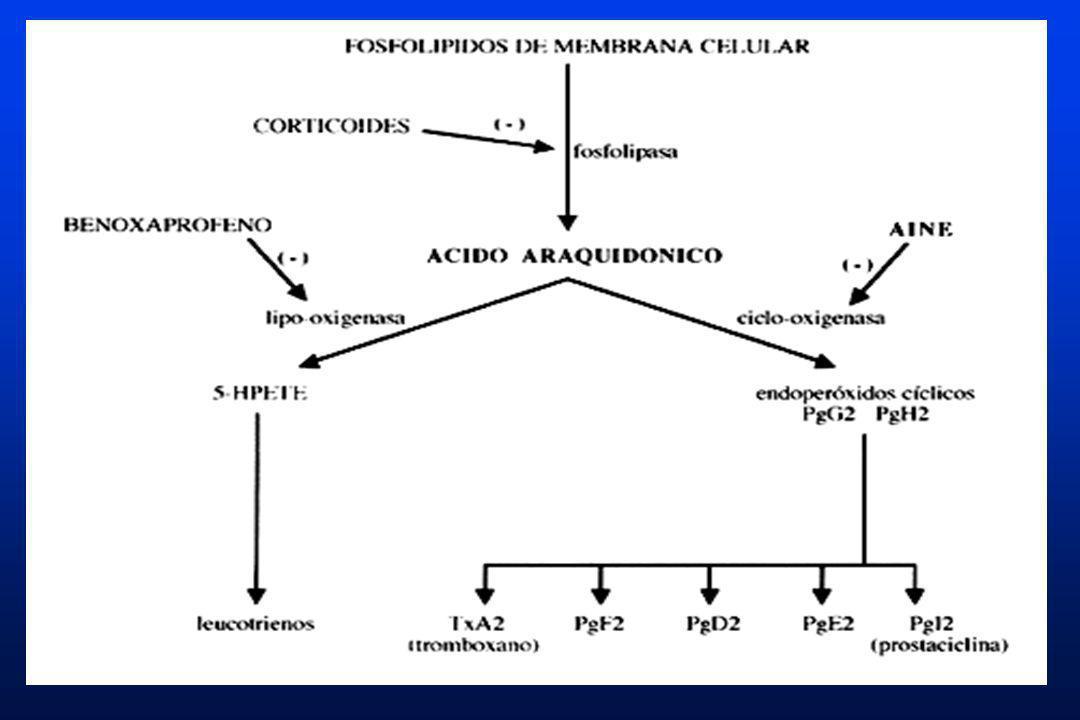 FUNCIONES DE LAS PROSTAGLANDINAS A NIVEL DEL ESTÓMAGO Y DUODENO Las prostaglandinas producidas en el estómago y duodeno son las prostaglandinas E2, I2 y F2.Las prostaglandinas producidas en el estómago y duodeno son las prostaglandinas E2, I2 y F2.