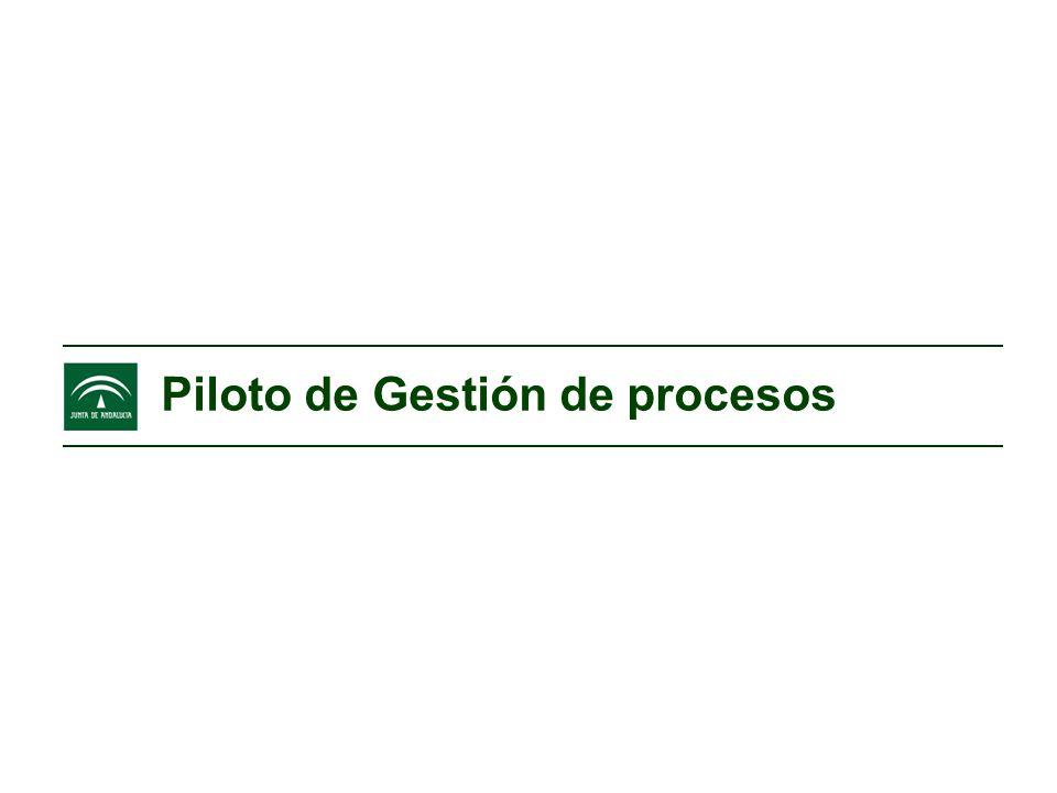 Piloto de Gestión de procesos Gestión por procesos y Benchmarking