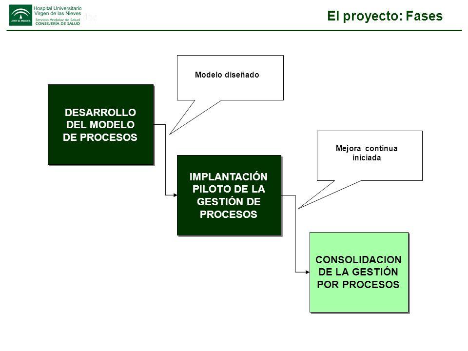 Organización del proyecto LIDERAZGO DEL EQUIPO DIRECTIVO EQUIPO DE DISEÑO DEL MODELO DE PROCESOS EQUIPO DE DISEÑO DEL MODELO DE PROCESOS DESARROLLO DEL MODELO DE PROCESOS DESARROLLO DEL MODELO DE PROCESOS IMPLANTACIÓN PILOTO DE LA GESTIÓN DE PROCESOS IMPLANTACIÓN PILOTO DE LA GESTIÓN DE PROCESOS CONSOLIDACION DE LA GESTIÓN POR PROCESOS CONSOLIDACION DE LA GESTIÓN POR PROCESOS MODELO DE PROCESOS PROPIETARIOS DE PROCESO PROPIETARIOS DE PROCESO GESTIÓN DE PROCESOS EQUIPO DE APOYO GESTIÓN POR PROCESOS