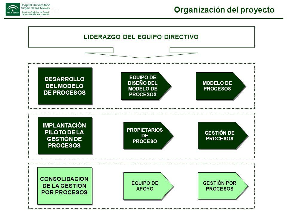 Modelo de procesos Gestión por procesos y Benchmarking
