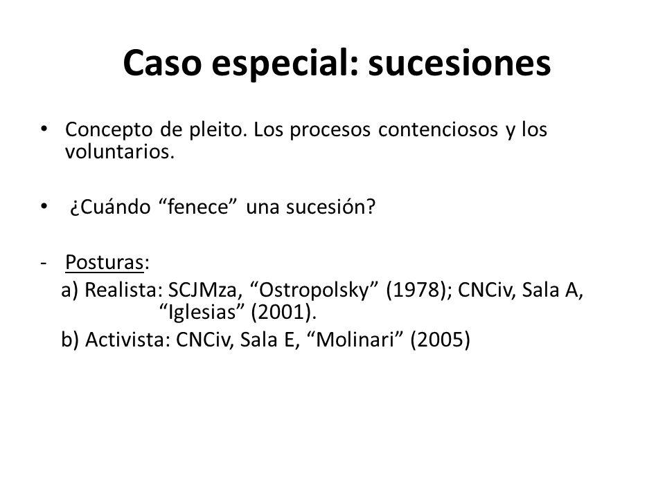 Caso especial: sucesiones Concepto de pleito. Los procesos contenciosos y los voluntarios. ¿Cuándo fenece una sucesión? -Posturas: a) Realista: SCJMza