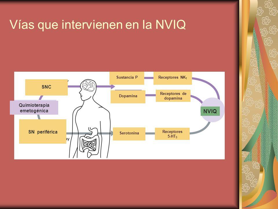 Vías que intervienen en la NVIQ Quimioterapia emetogénica NVIQ SNC SN periférica Sustancia P Dopamina Receptores NK 1 Receptores de dopamina Receptore
