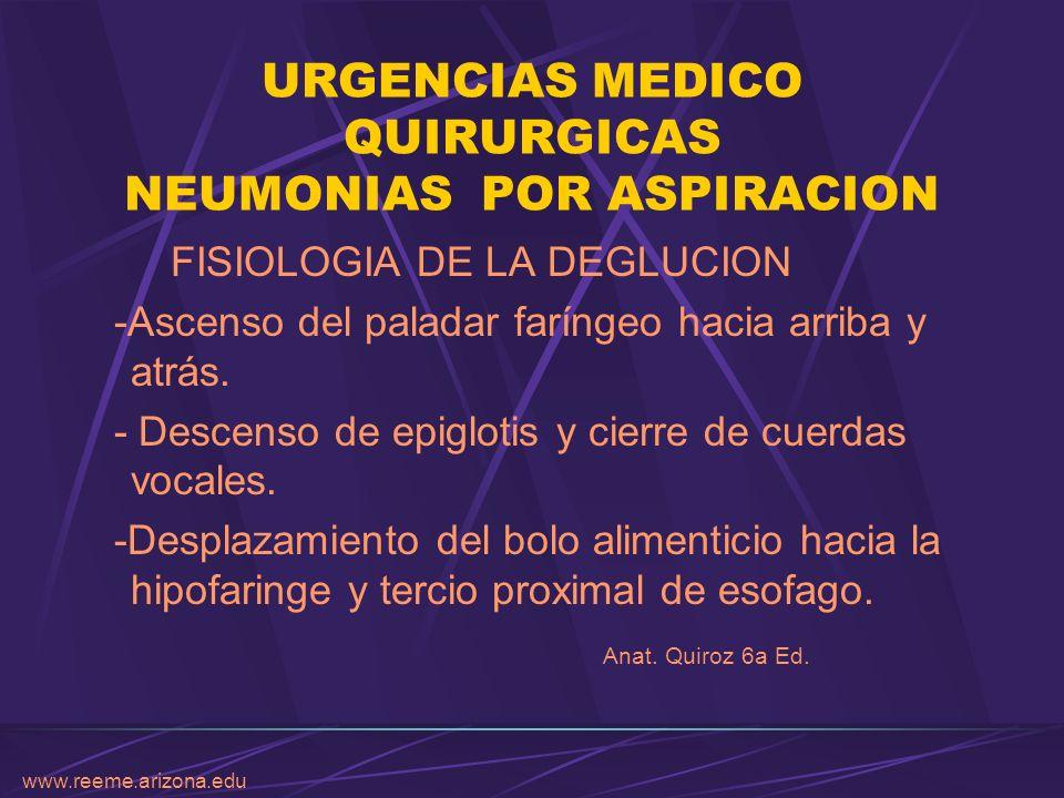 www.reeme.arizona.edu URGENCIAS MEDICO QUIRURGICAS NEUMONIAS POR ASPIRACION ETIOPATOGENIA I.- Depresión de la protección refleja.