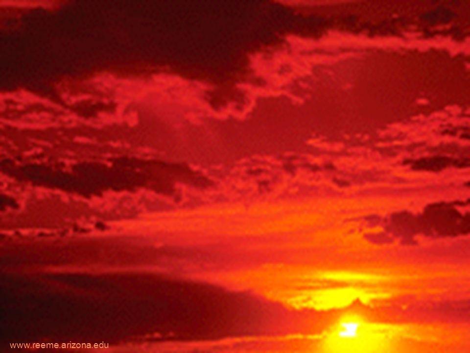 www.reeme.arizona.edu URGENCIAS MEDICO QUIRURGICAS NEUMONIAS POR ASPIRACION NEUMONIA LIPOIDICA - Está causada por la aspiración de materiales oleosos orgánicos e inorgánicos, - Produce una reacción inflamatoria difusa, con lesión de la membrana alveolo-capilar, que evoluciona a fibrosis.
