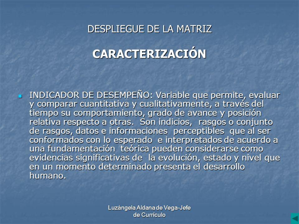 Luzángela Aldana de Vega-Jefe de Currículo DESPLIEGUE DE LA MATRIZ CARACTERIZACIÓN INDICADOR DE DESEMPEÑO: Variable que permite, evaluar y comparar cu