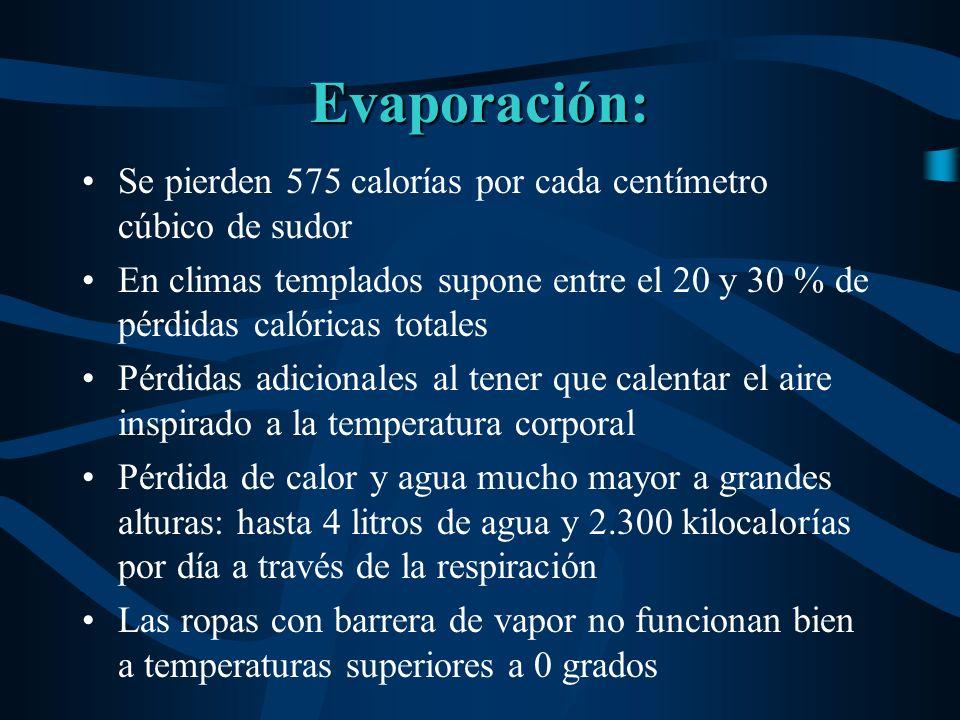 Evaporación: Se pierden 575 calorías por cada centímetro cúbico de sudor En climas templados supone entre el 20 y 30 % de pérdidas calóricas totales P