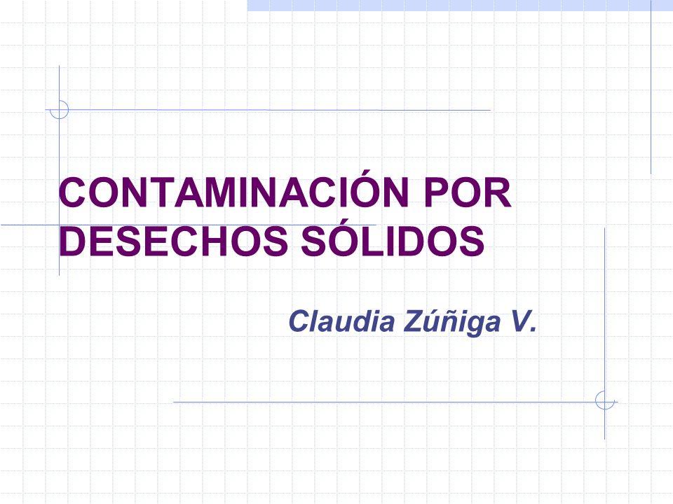CONTAMINACIÓN POR DESECHOS SÓLIDOS Claudia Zúñiga V.
