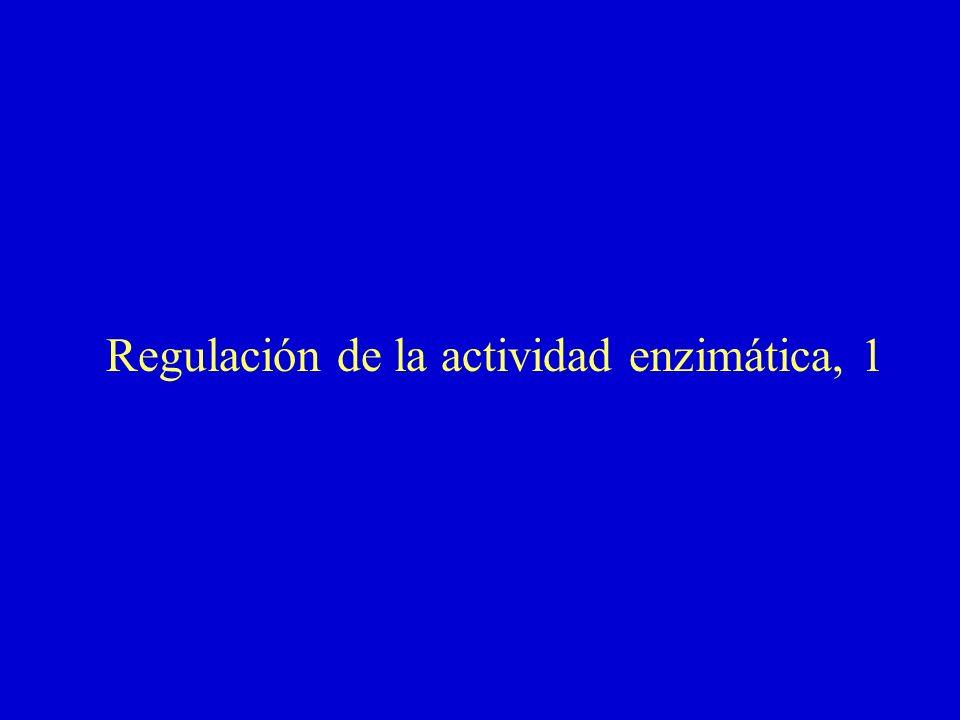 Regulación de la actividad enzimática, 1