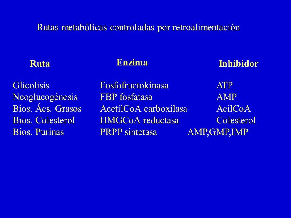 Rutas metabólicas controladas por retroalimentación GlicolisisFosfofructokinasaATP NeoglucogénesisFBP fosfatasaAMP Bios. Ács. GrasosAcetilCoA carboxil
