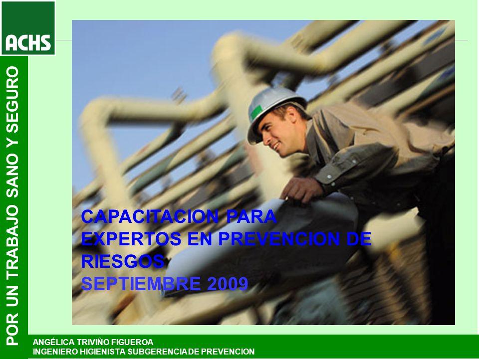 POR UN TRABAJO SANO Y SEGURO CAPACITACION PARA EXPERTOS EN PREVENCION DE RIESGOS SEPTIEMBRE 2009 ANGÉLICA TRIVIÑO FIGUEROA INGENIERO HIGIENISTA SUBGER