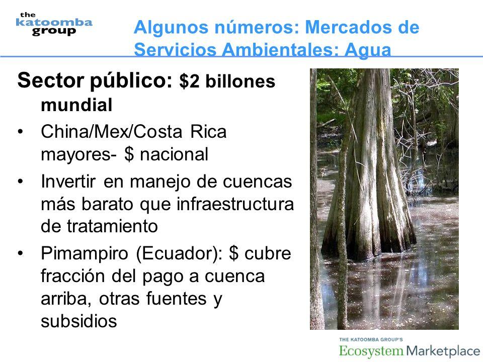 Algunos números: Mercados de Servicios Ambientales: Agua Sector público: $2 billones mundial China/Mex/Costa Rica mayores- $ nacional Invertir en manejo de cuencas más barato que infraestructura de tratamiento Pimampiro (Ecuador): $ cubre fracción del pago a cuenca arriba, otras fuentes y subsidios