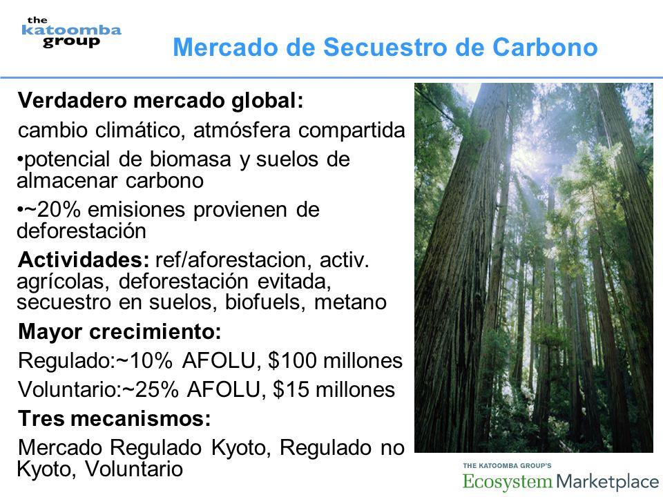 Mercado de Secuestro de Carbono Verdadero mercado global: cambio climático, atmósfera compartida potencial de biomasa y suelos de almacenar carbono ~20% emisiones provienen de deforestación Actividades: ref/aforestacion, activ.