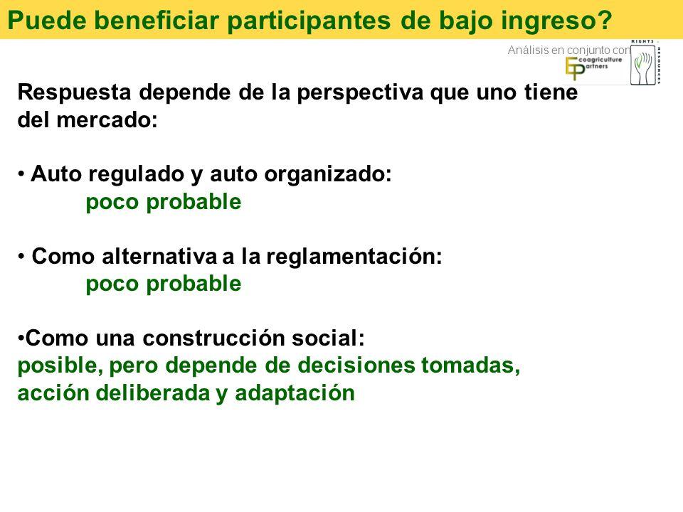Puede beneficiar participantes de bajo ingreso? Respuesta depende de la perspectiva que uno tiene del mercado: Auto regulado y auto organizado: poco p