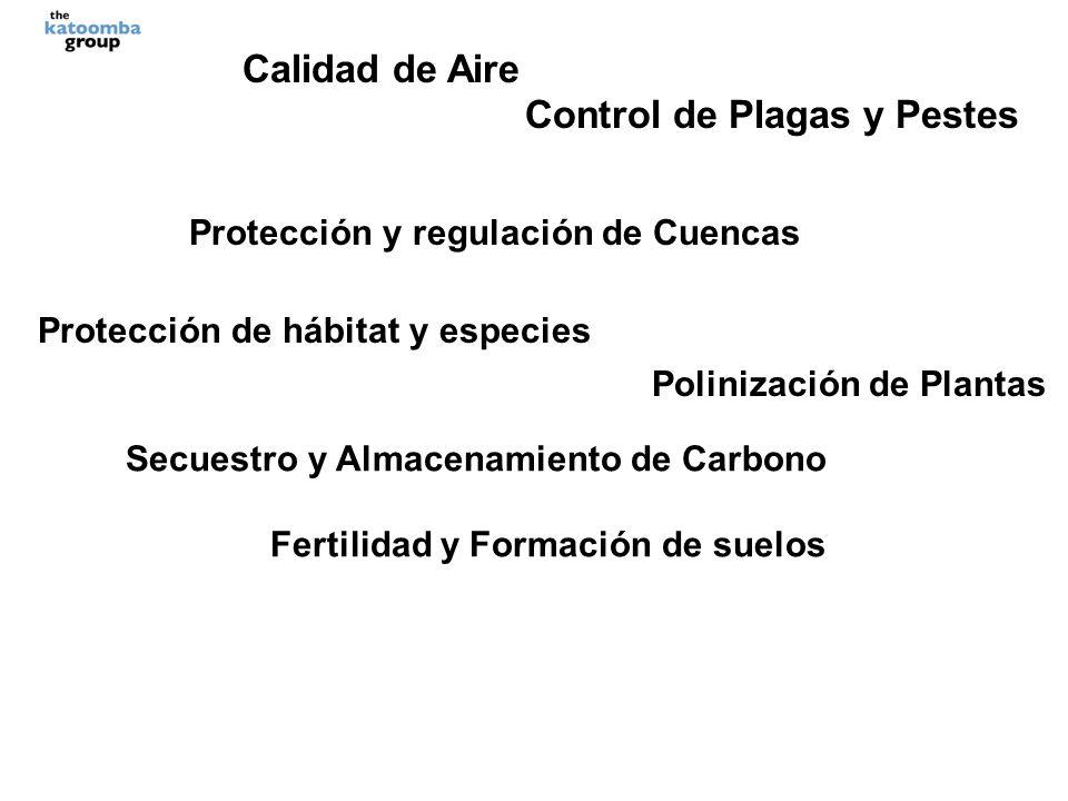 Calidad de Aire Control de Plagas y Pestes Protección y regulación de Cuencas Protección de hábitat y especies Polinización de Plantas Secuestro y Almacenamiento de Carbono Fertilidad y Formación de suelos Descomposición de deshechos Belleza escénica