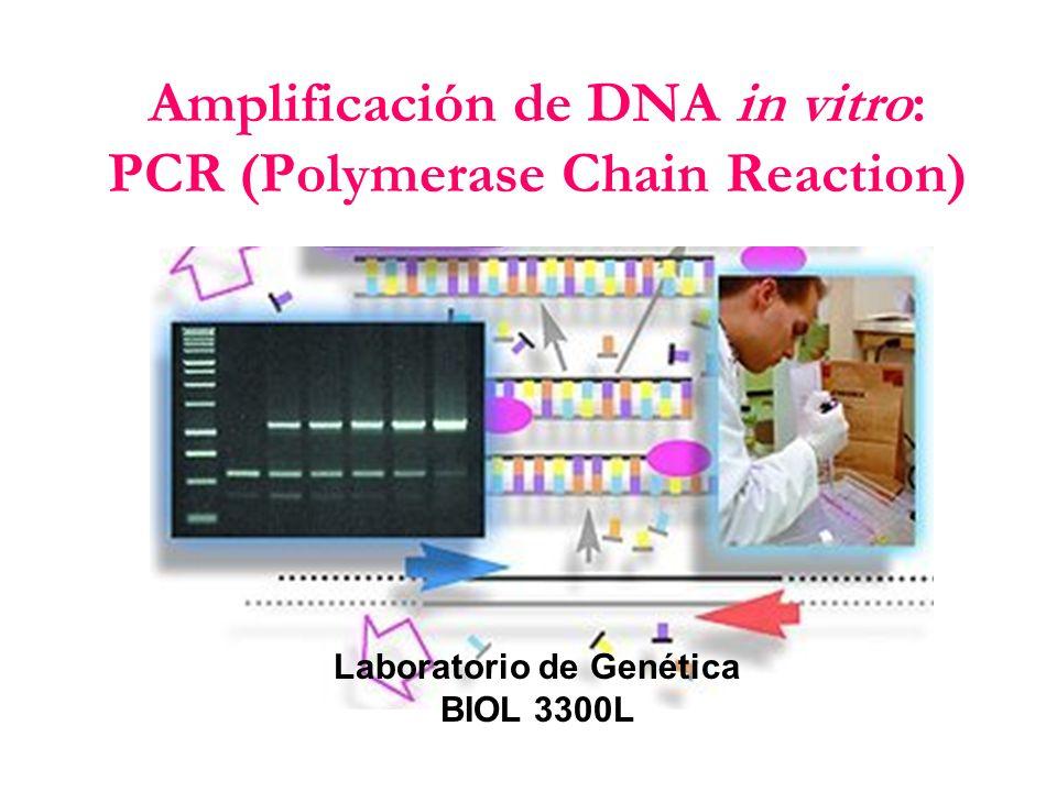 Reactivos necesarios para PCR: Amortiguador (Buffer): 50mM KCl, 10mM Tris.