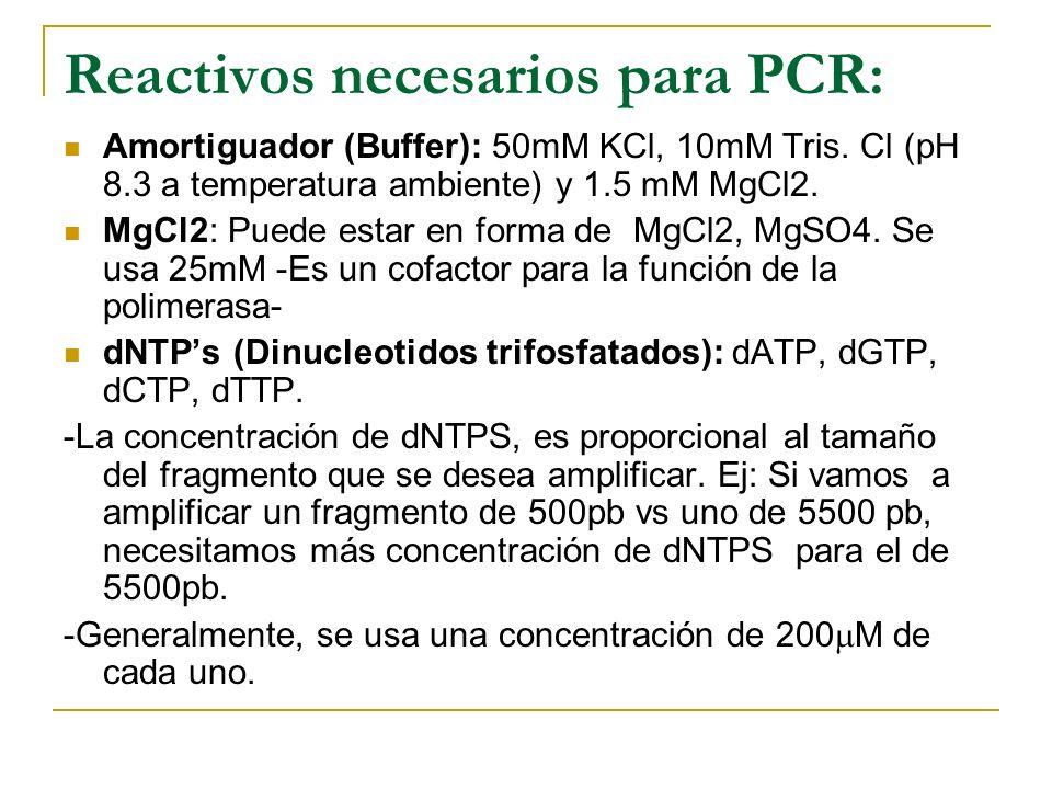 En el PCR hay una amplificación exponencial
