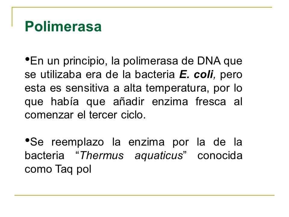 ADYUVANTES DE LA PCR Son elementos que mejoran el rendimiento y la especificidad de la PCR. Se usa DMSO, glicerol o BSA. El adyuvante más utilizado es