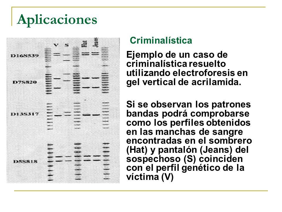 Se puede amplificar directamente de: ADN genómico cDNA (RT-PCR) Aplicaciones Detección de agentes infecciosos como: hepatitis B y C, papiloma virus, H