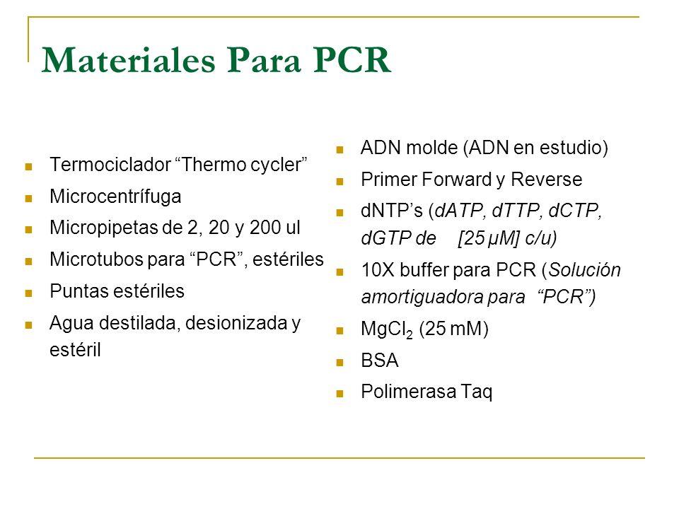 Desventajas del PCR Se puede reproducir solamente partes del genoma en donde se conoce por lo menos una mínima secuencia de 20 – 40 pb. Se necesitan p