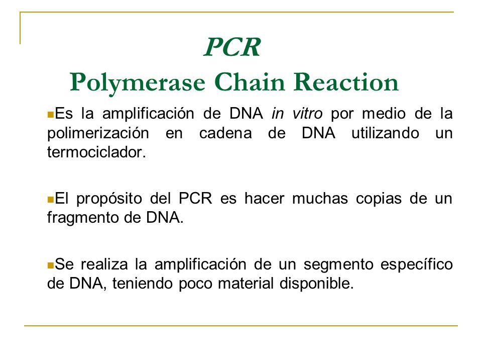 Materiales Para PCR Termociclador Thermo cycler Microcentrífuga Micropipetas de 2, 20 y 200 ul Microtubos para PCR, estériles Puntas estériles Agua destilada, desionizada y estéril ADN molde (ADN en estudio) Primer Forward y Reverse dNTPs (dATP, dTTP, dCTP, dGTP de [25 μM] c/u) 10X buffer para PCR (Solución amortiguadora para PCR) MgCl 2 (25 mM) BSA Polimerasa Taq