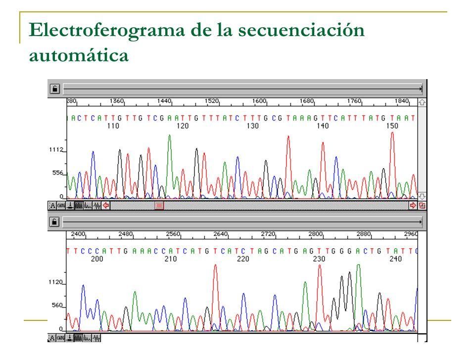 Método secuenciación automática
