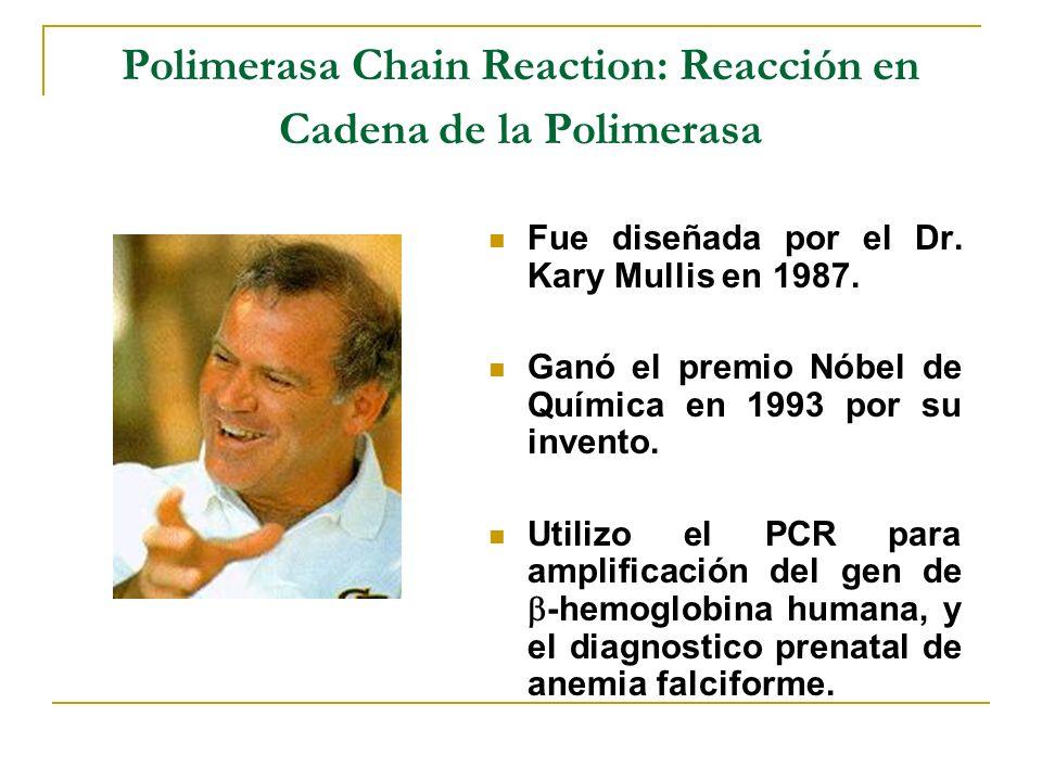 PCR Polymerase Chain Reaction Es la amplificación de DNA in vitro por medio de la polimerización en cadena de DNA utilizando un termociclador.