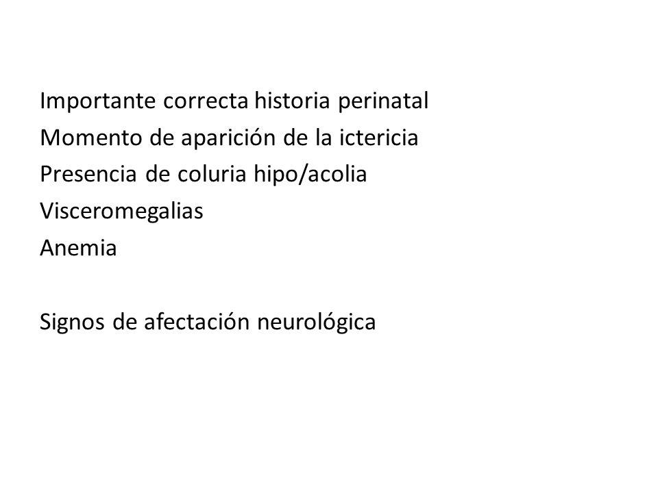 Importante correcta historia perinatal Momento de aparición de la ictericia Presencia de coluria hipo/acolia Visceromegalias Anemia Signos de afectaci