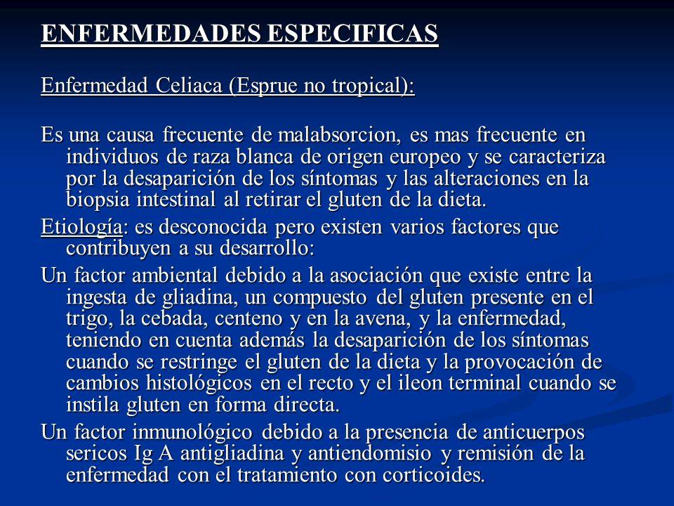 ENFERMEDADES ESPECIFICAS Enfermedad Celiaca (Esprue no tropical): Es una causa frecuente de malabsorcion, es mas frecuente en individuos de raza blanc