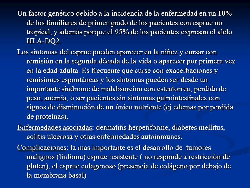 Un factor genético debido a la incidencia de la enfermedad en un 10% de los familiares de primer grado de los pacientes con esprue no tropical, y adem