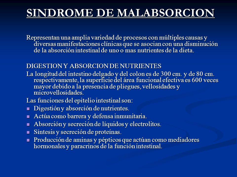 SINDROME DE MALABSORCION Representan una amplia variedad de procesos con múltiples causas y diversas manifestaciones clínicas que se asocian con una d