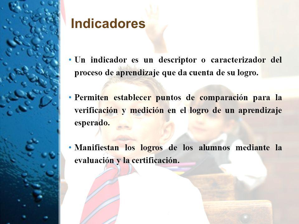Indicadores Un indicador es un descriptor o caracterizador del proceso de aprendizaje que da cuenta de su logro. Permiten establecer puntos de compara
