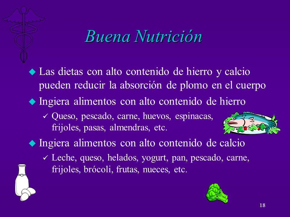 18 Buena Nutrición u Las dietas con alto contenido de hierro y calcio pueden reducir la absorción de plomo en el cuerpo u Ingiera alimentos con alto c