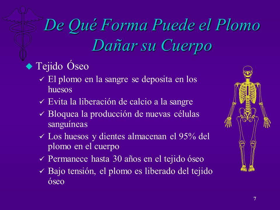 7 De Qué Forma Puede el Plomo Dañar su Cuerpo u Tejido Óseo ü El plomo en la sangre se deposita en los huesos ü Evita la liberación de calcio a la san