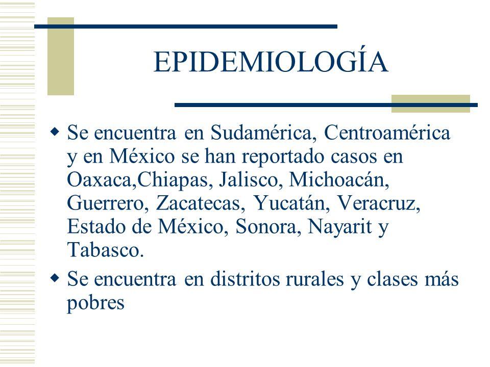 EPIDEMIOLOGÍA Se encuentra en Sudamérica, Centroamérica y en México se han reportado casos en Oaxaca,Chiapas, Jalisco, Michoacán, Guerrero, Zacatecas, Yucatán, Veracruz, Estado de México, Sonora, Nayarit y Tabasco.
