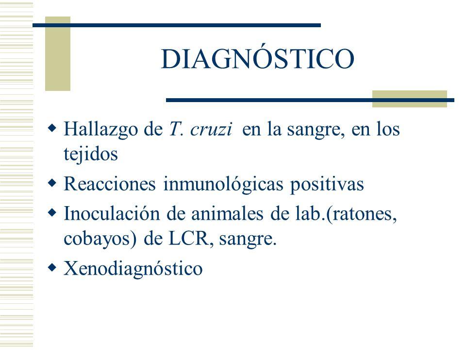 DIAGNÓSTICO Hallazgo de T.