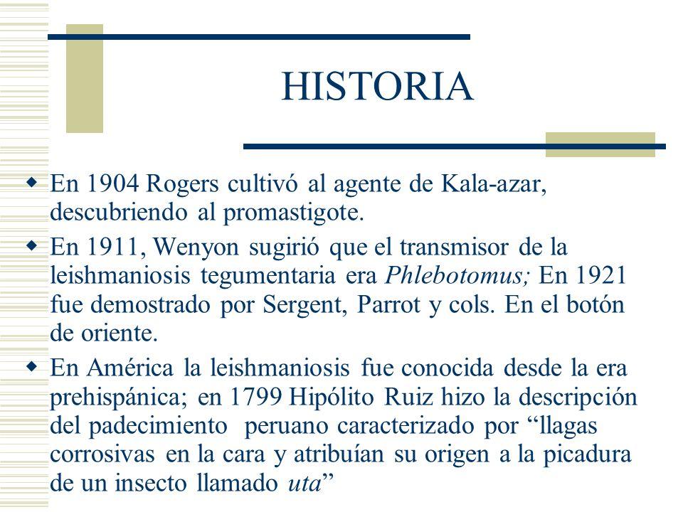 HISTORIA En 1904 Rogers cultivó al agente de Kala-azar, descubriendo al promastigote.