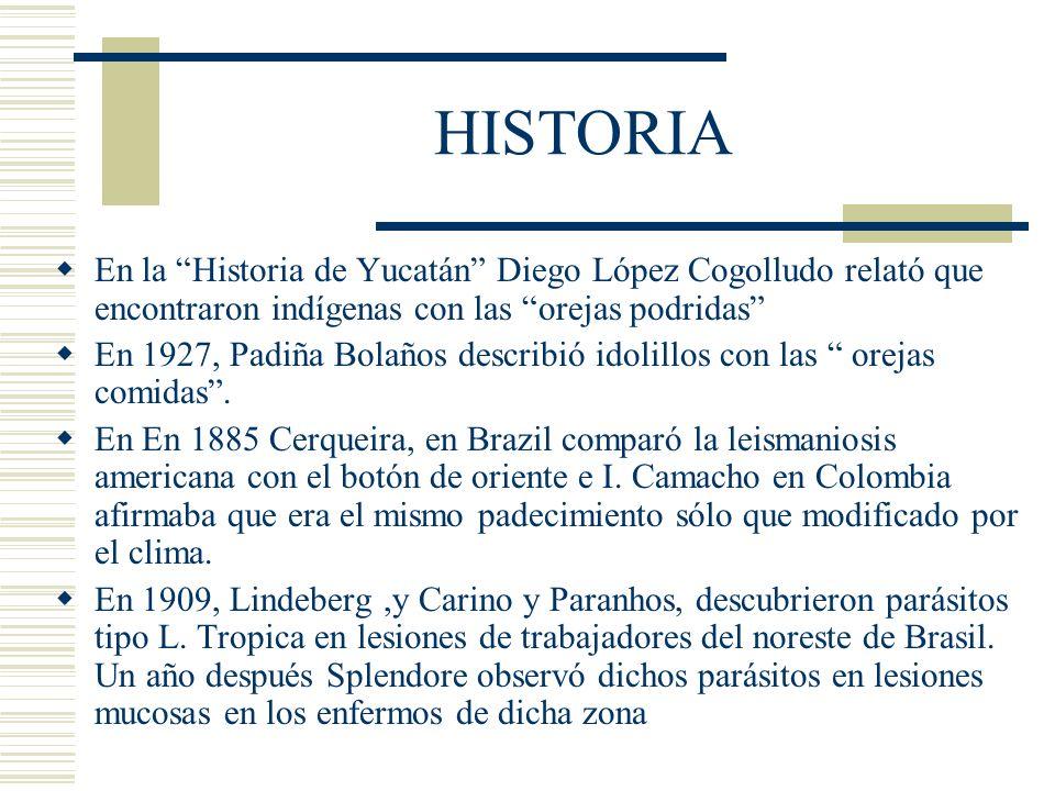 HISTORIA En la Historia de Yucatán Diego López Cogolludo relató que encontraron indígenas con las orejas podridas En 1927, Padiña Bolaños describió idolillos con las orejas comidas.